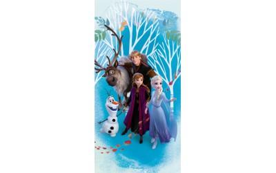 Dětská osuška Frozen II